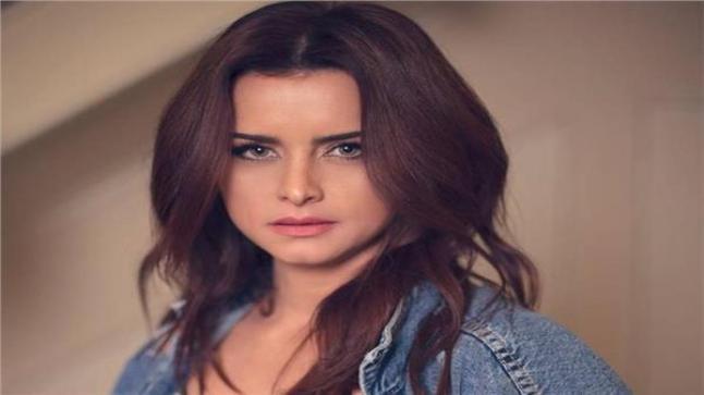 الفنانة نور اللبنانية تقوم بدور مذيعة في مسلسل جمال الحريم
